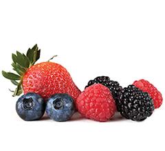 Delegate e Frutos Vermelhos